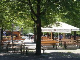 Hopfengarten (Biergarten)